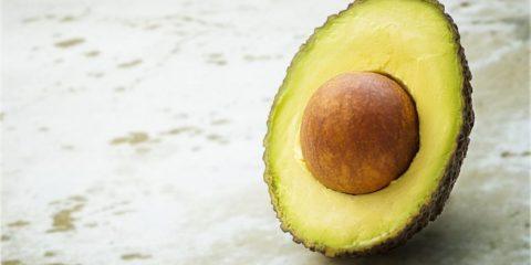 Avocado pit planten