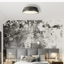 Wat voor lamp in plafonniere?