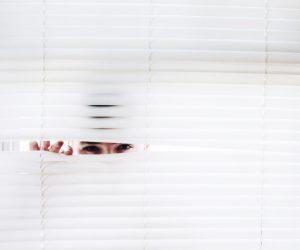 raamdecoratie privacy