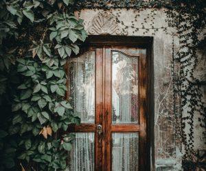 Tips voor het hebben van een insectenvrij huis